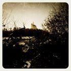 Marksburg heute bei Sonnenschein