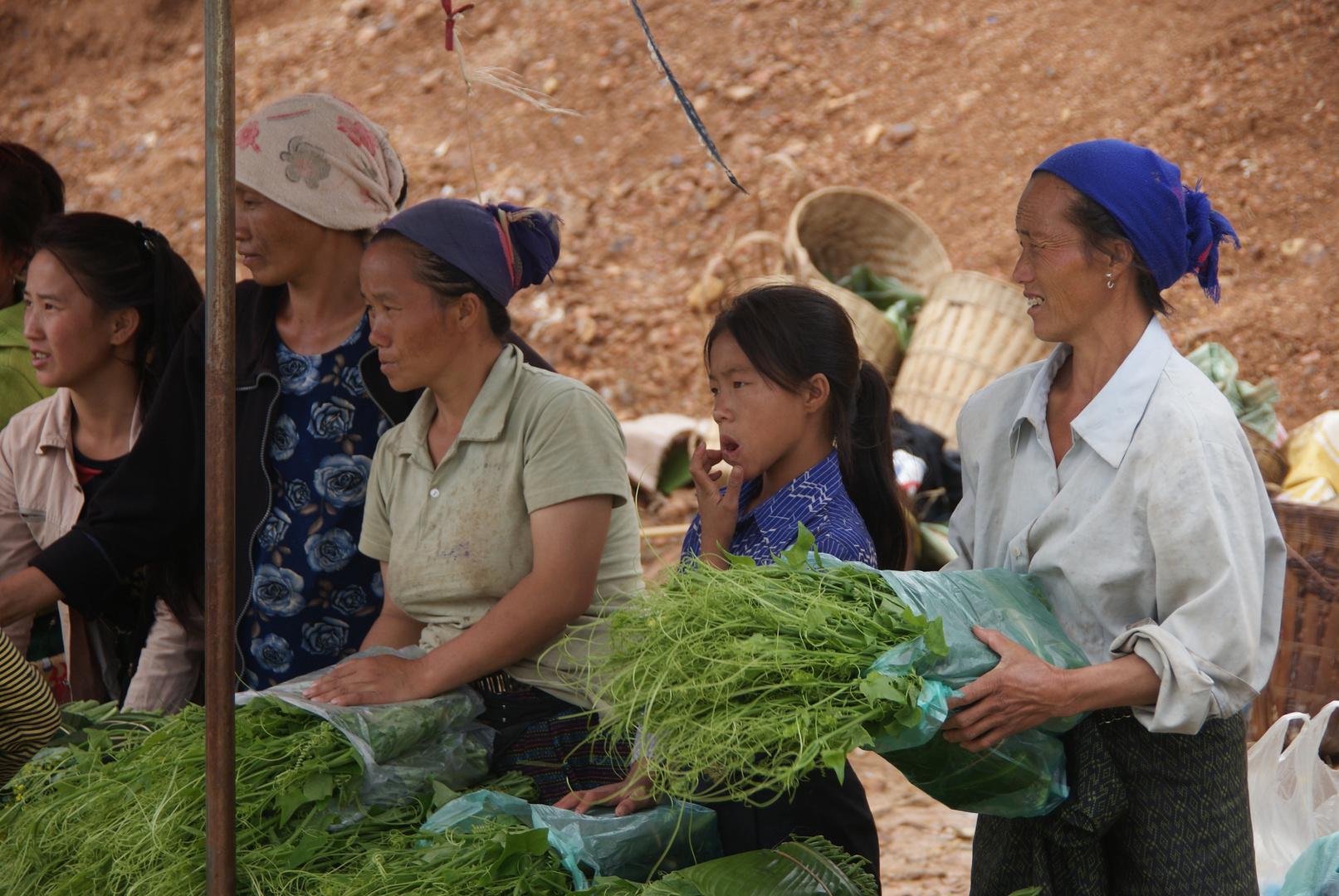 markt an der strassengabelung, laos 2010