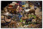 Markt in Indien, Hyderabad, März 2014