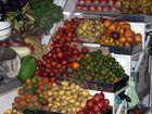Markt in Latacunga I