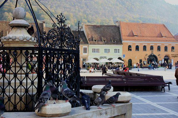 Marktplatz von Brasov (Kronstadt)