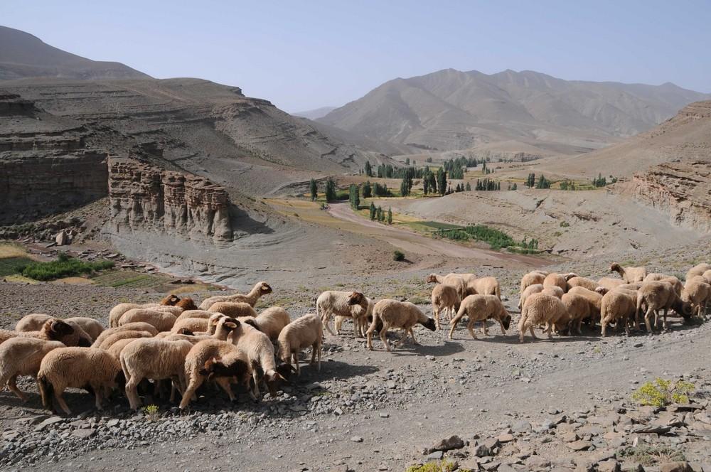 Maroc Massif de l'Atlas.