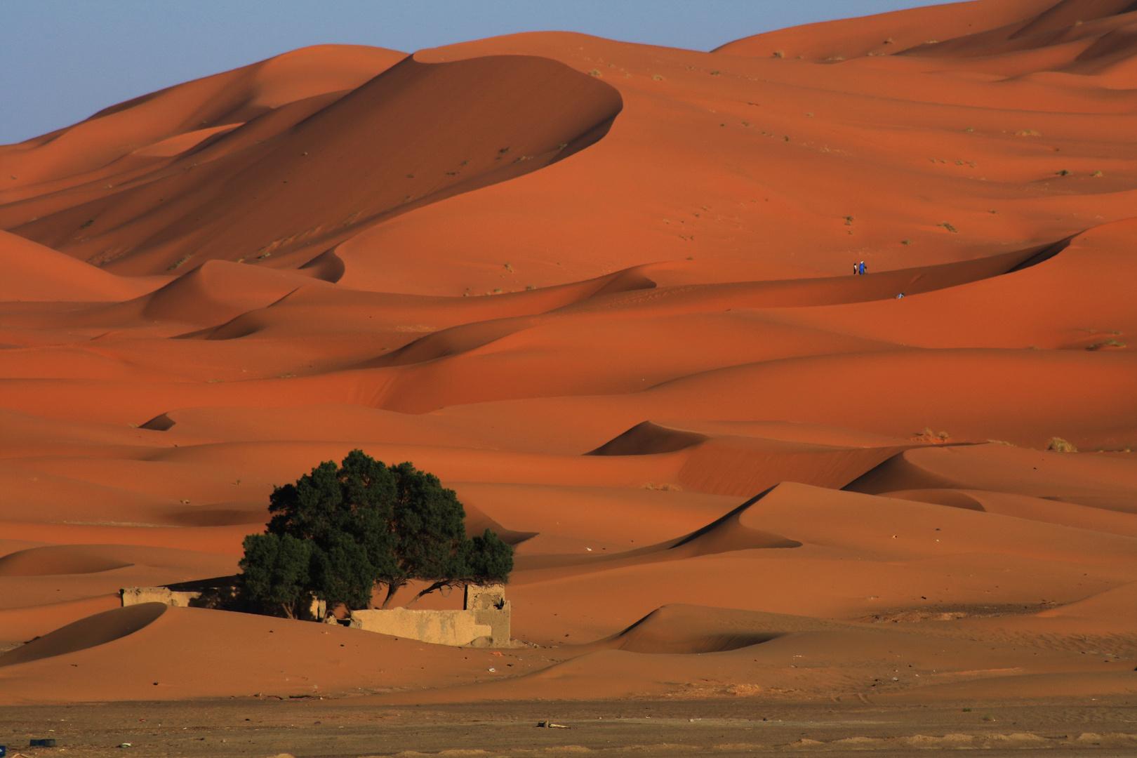 Marocco 4