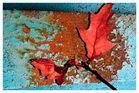 Marode Herbststimmung
