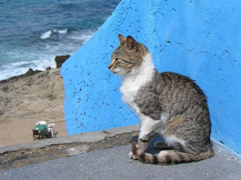Marokko 07