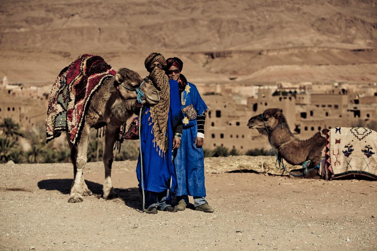 marokko-kamele