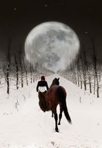 Marsha und der lange Weg zum Mond . . .
