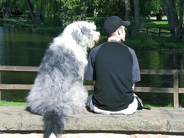 Marvin und Mirk im Park