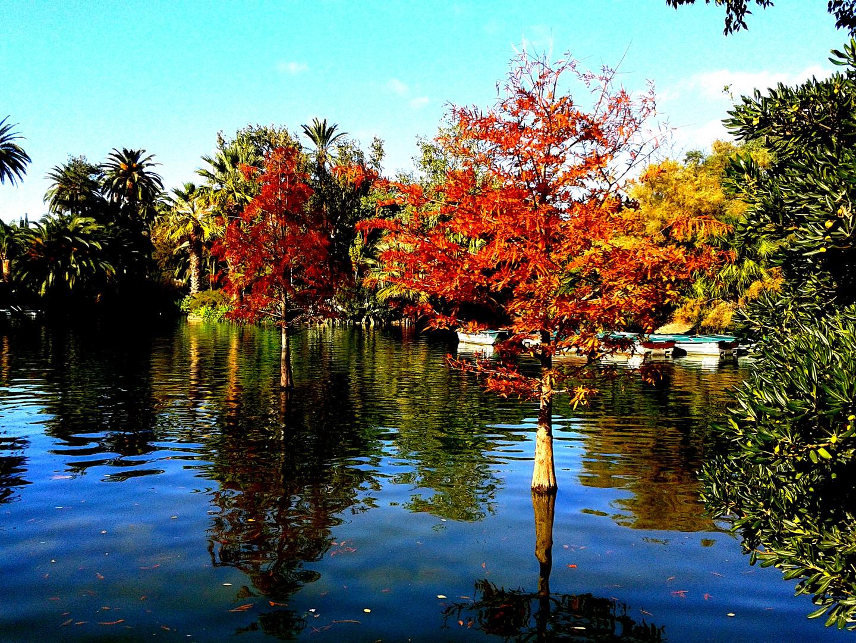 Mas colores vivos se nota que es otoño