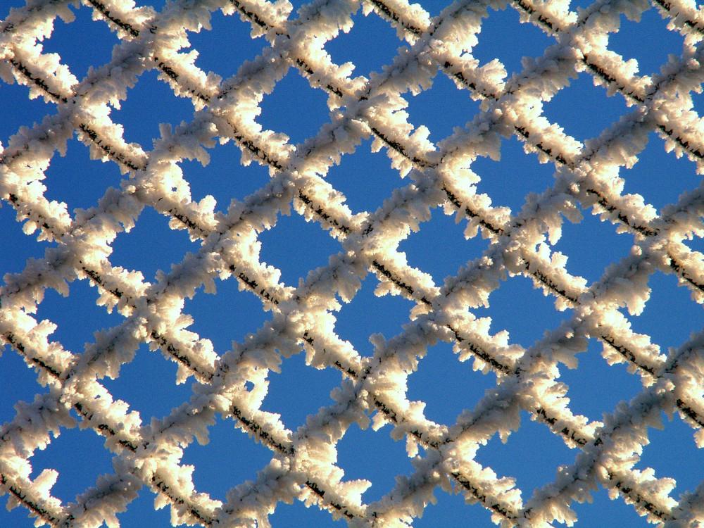 Maschendrahtzaun blau/weiß