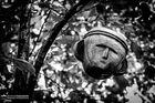 Maske in Baumkrone