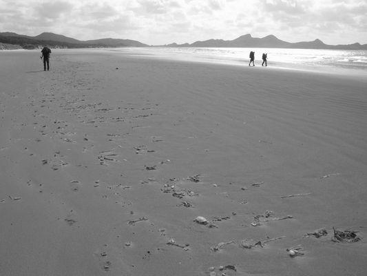 Mason Bay Stewart Island (NZ)