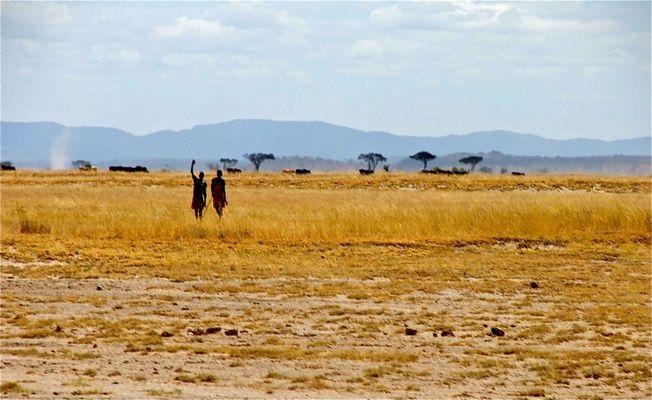 Massai Hirten