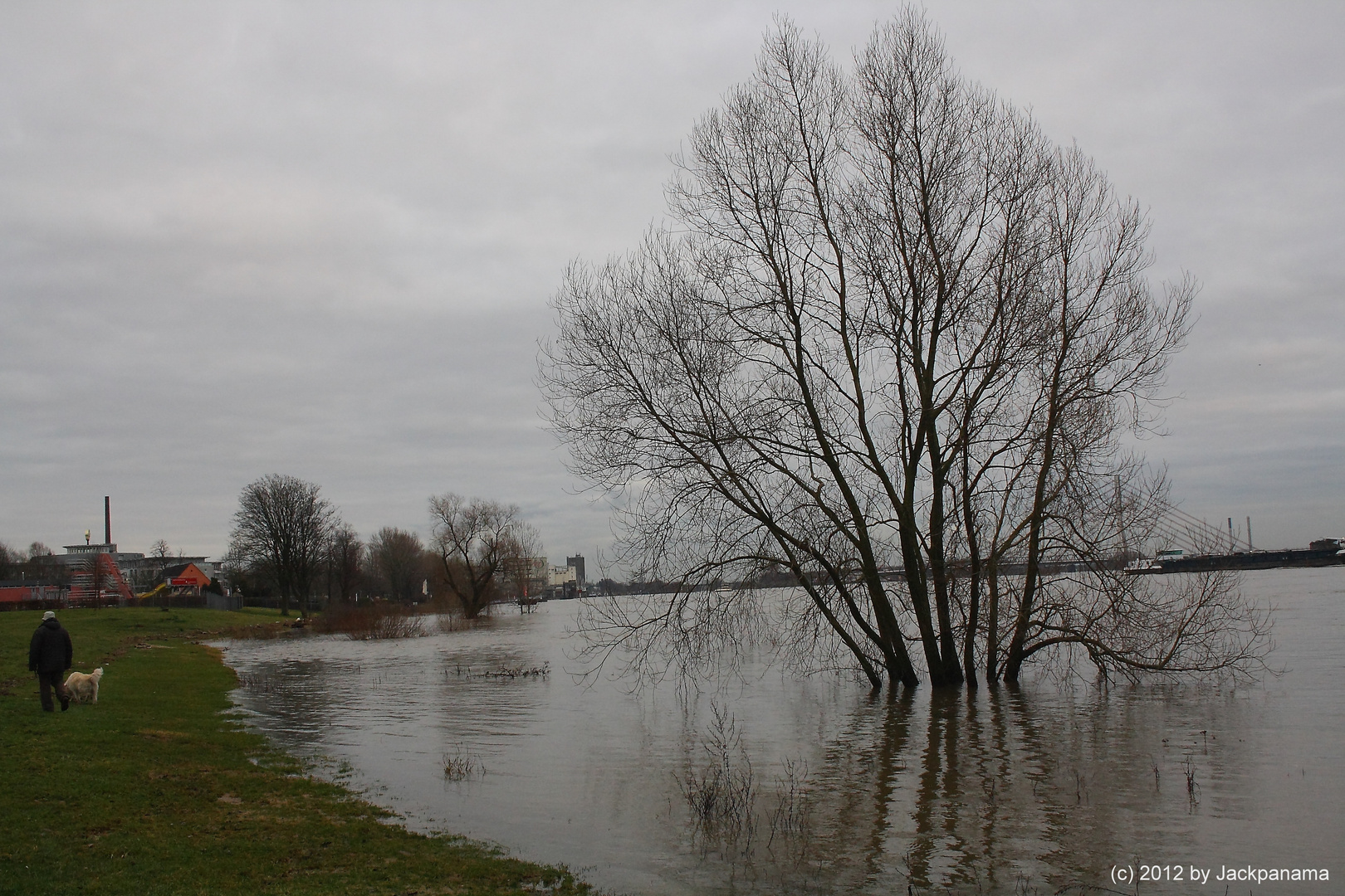 Massive Überschwemmung der Wiese am Städt. Rheinbad in Wesel
