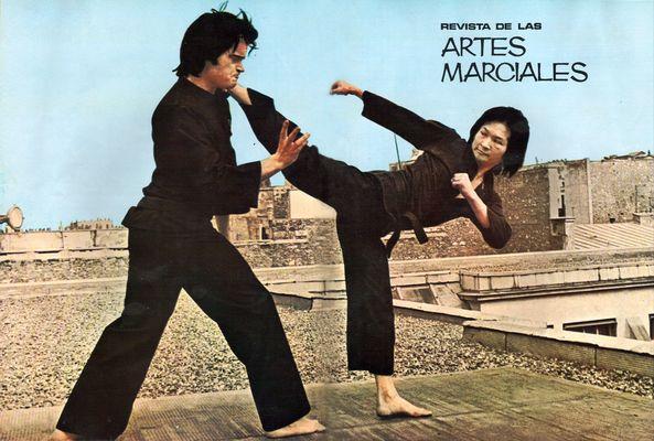 Master Yuen - Artes Marciales