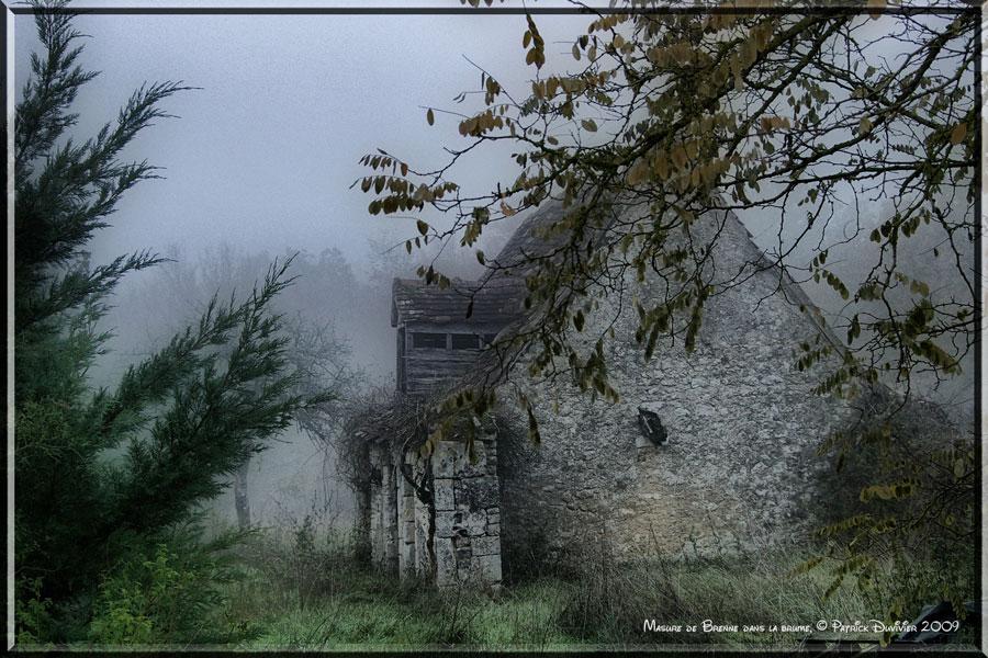 Masure de Brenne dans la brume
