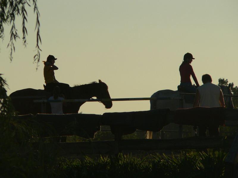 Masuren und Pferde