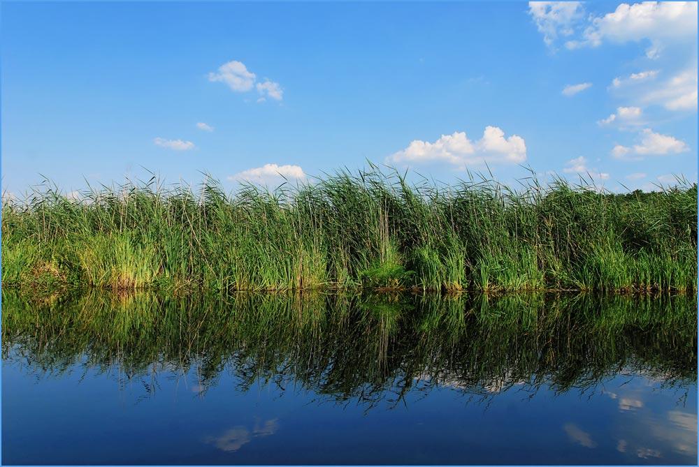Masurenreise 2007 _ Kruttinna-Fluß (Krutynia)