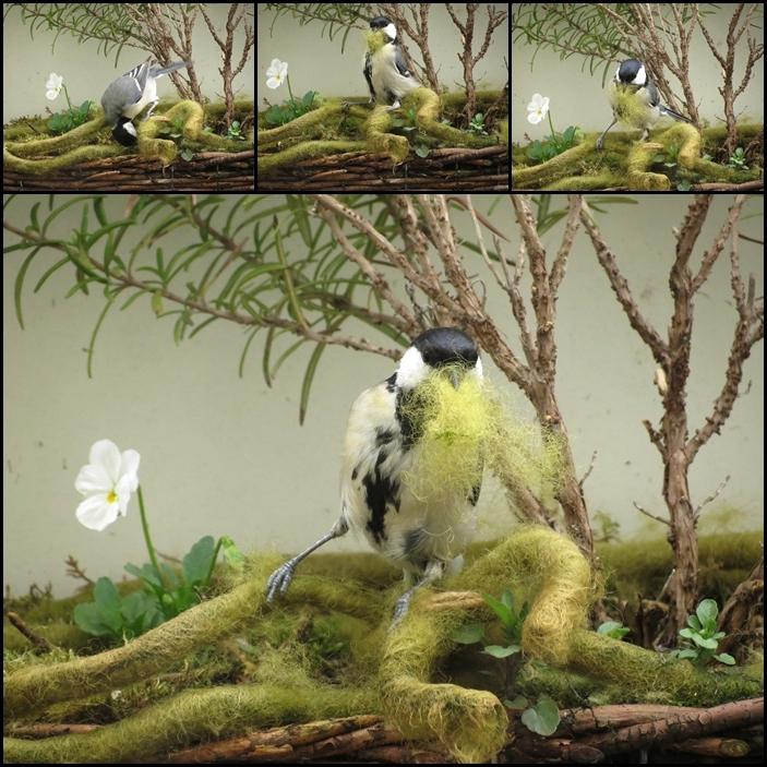 Material fürs Vogelnestle