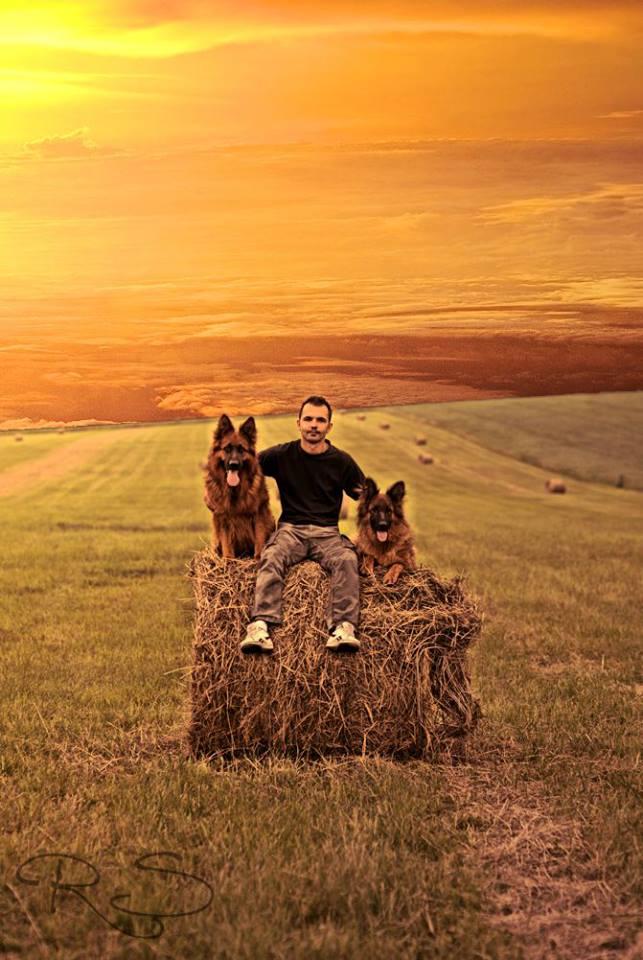 Mateusz und Hunde