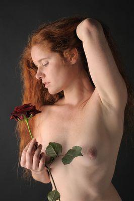 Mathildea 10