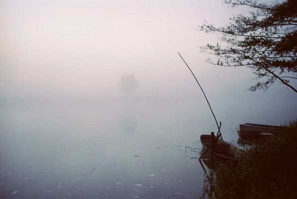 Matin brumeux sur le Loir