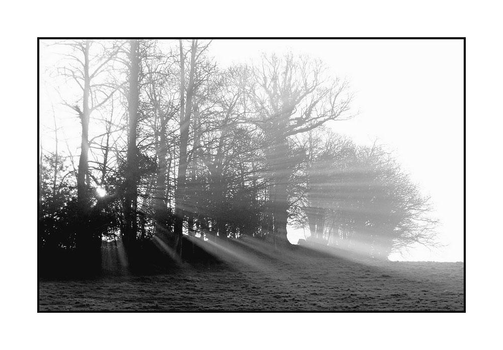 matin calme hivernal