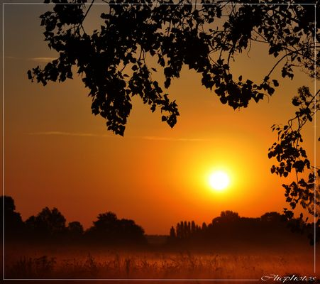 matin d'automne.