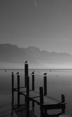 Matin d'automne - Lac d'Annecy