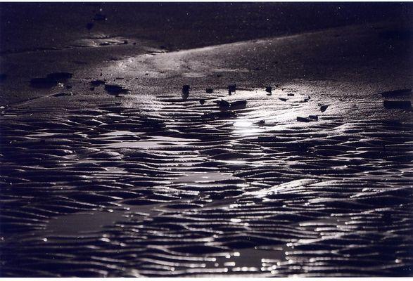 Matinée en Mer du Nord 1