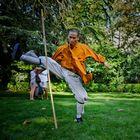 Maître SHI YAN JUN