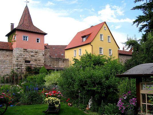 Mauerblümchen und Flurersturm