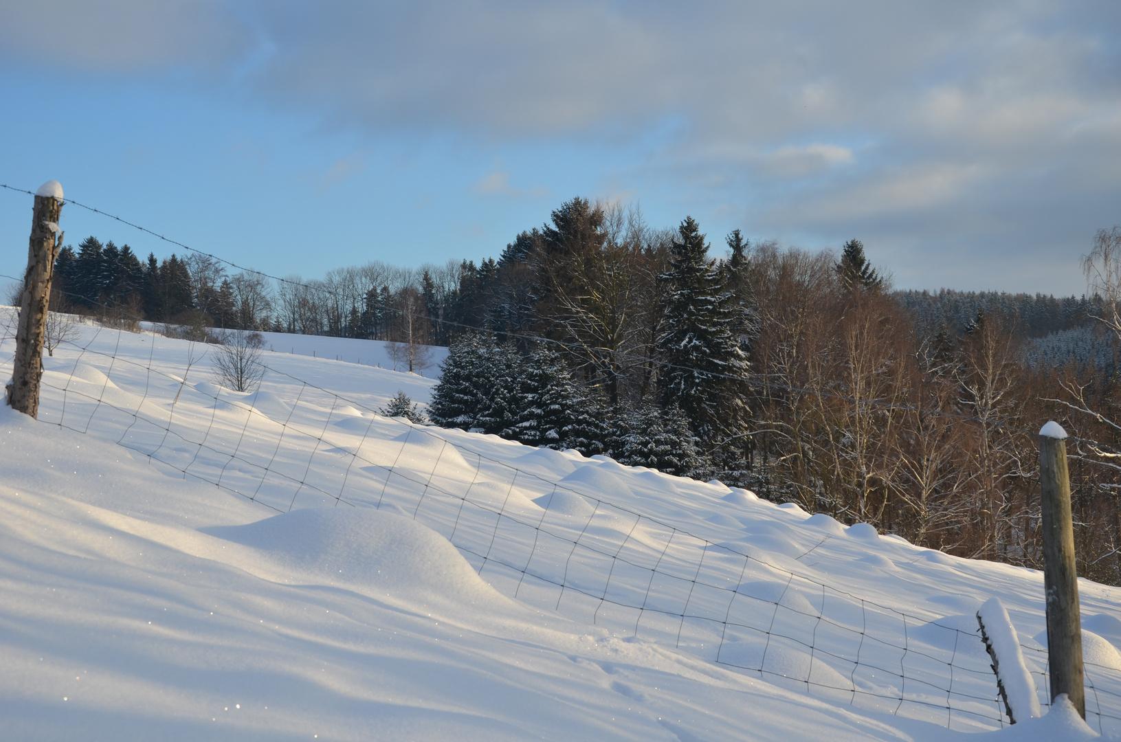 Maulwurfshügel im Schnee