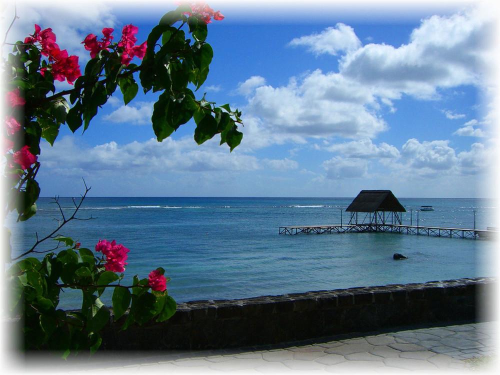 Mauritius - immer wieder toll