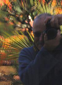 Mauro Melis