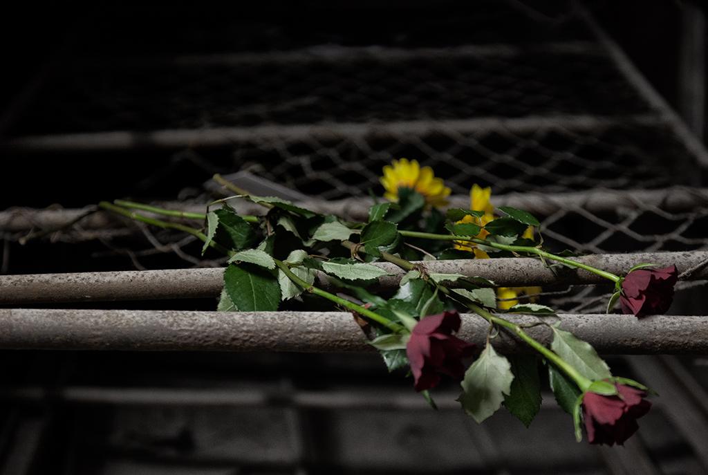 Mauthausen Memorial 2014