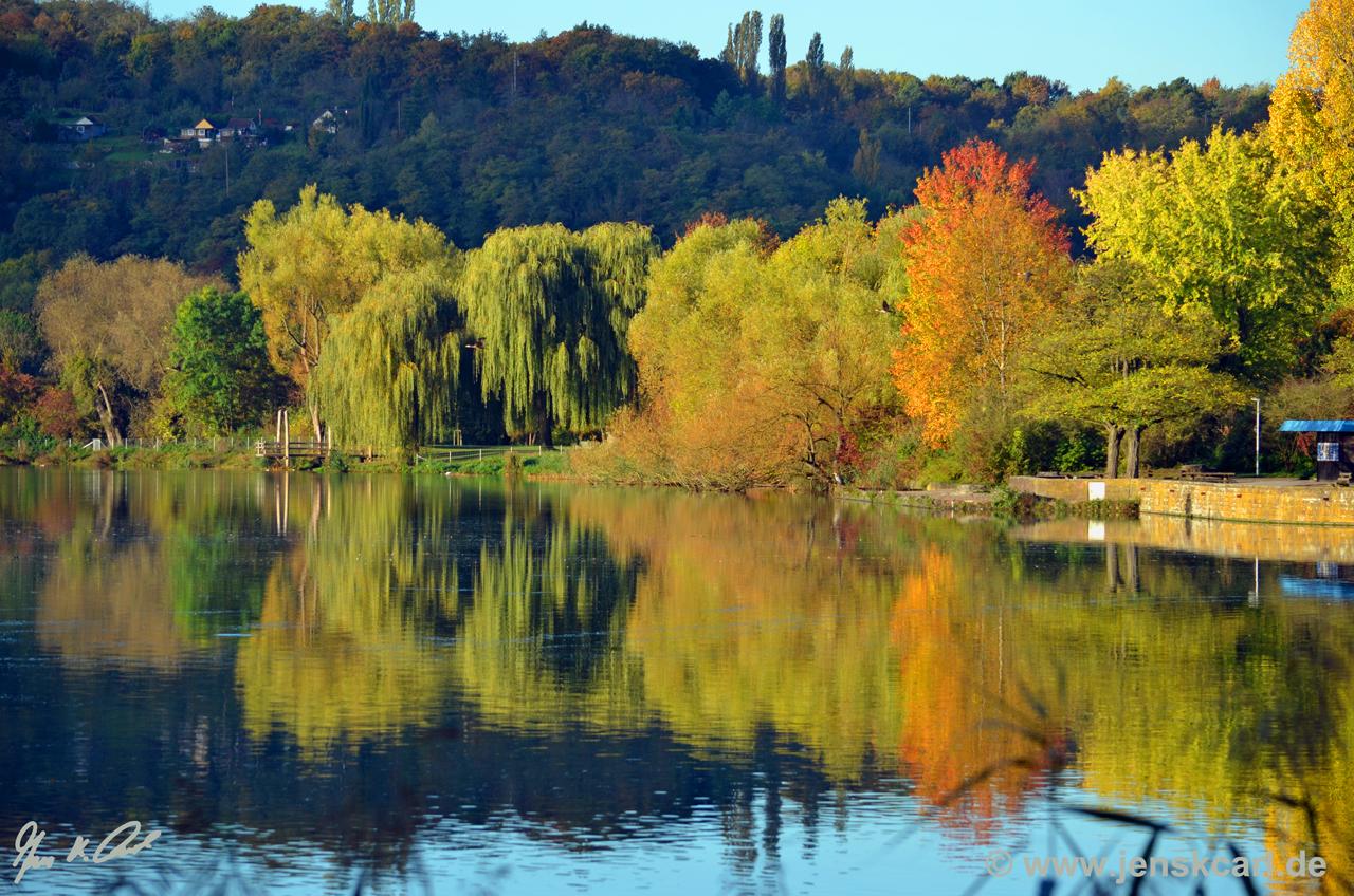 Max-Eyth-See Ufer im Herbst