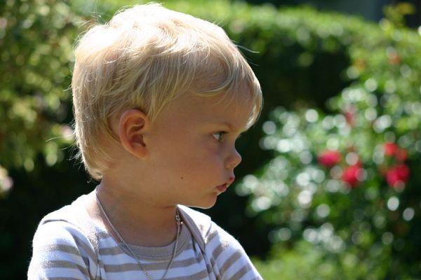 Max in Gedanken