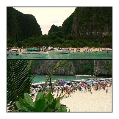 """- Maya Bay oder auch """"The Beach"""" -"""