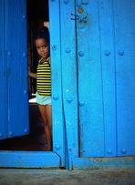 Maya m'observe....