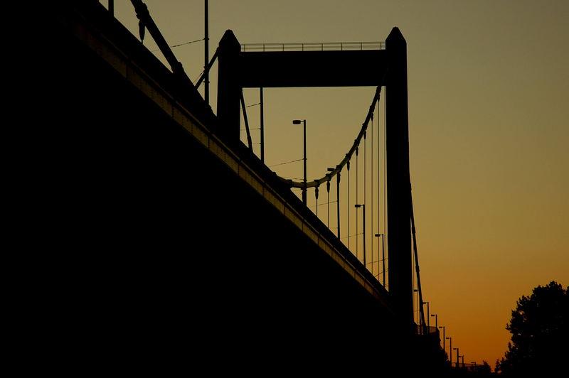 M.Brücke
