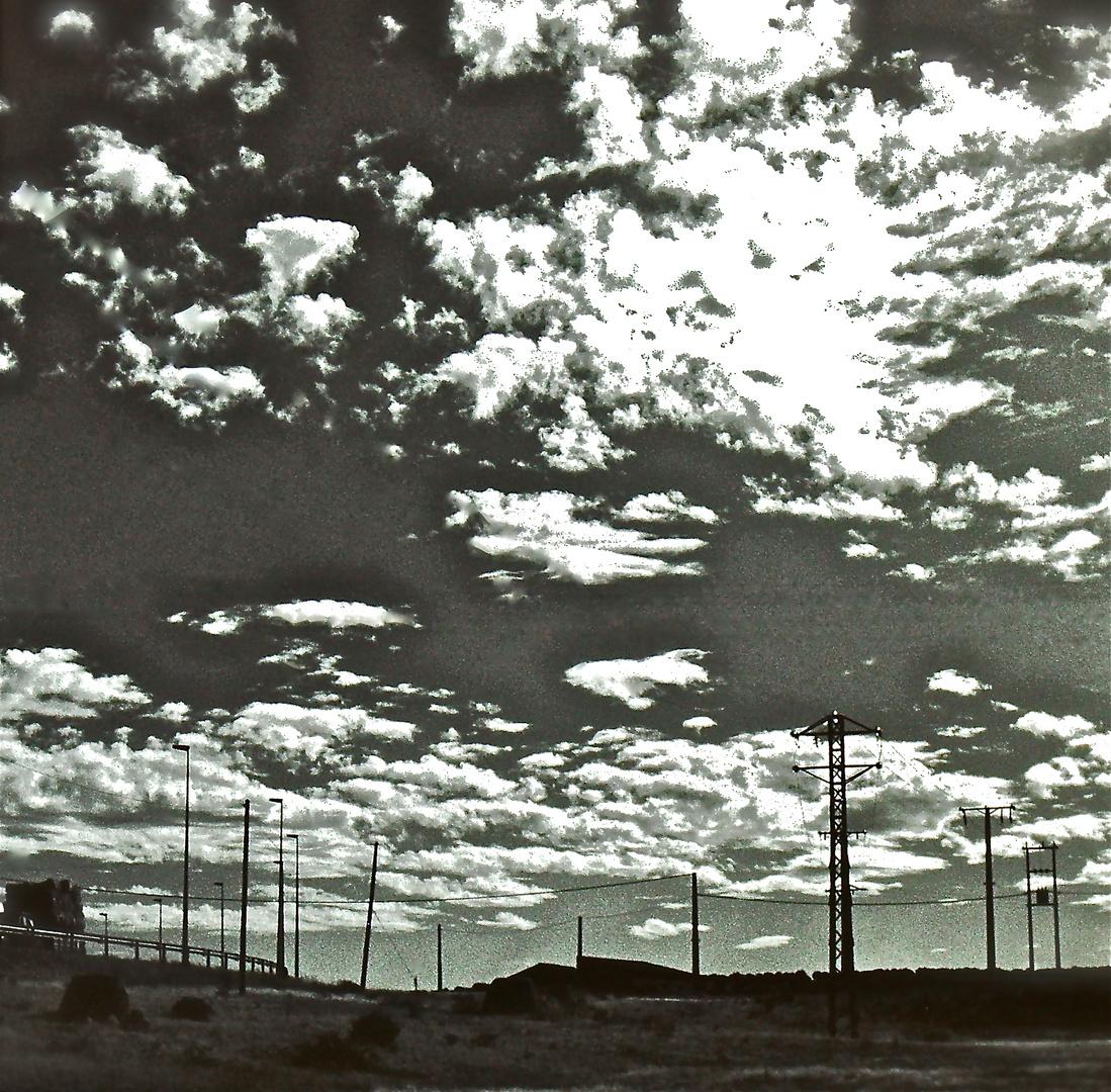 - Mc.Carthy -,, The Road ,,