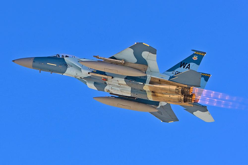 """McDonnell Douglas F-15C """"Eagle"""" - 65th Aggressor Squadron"""