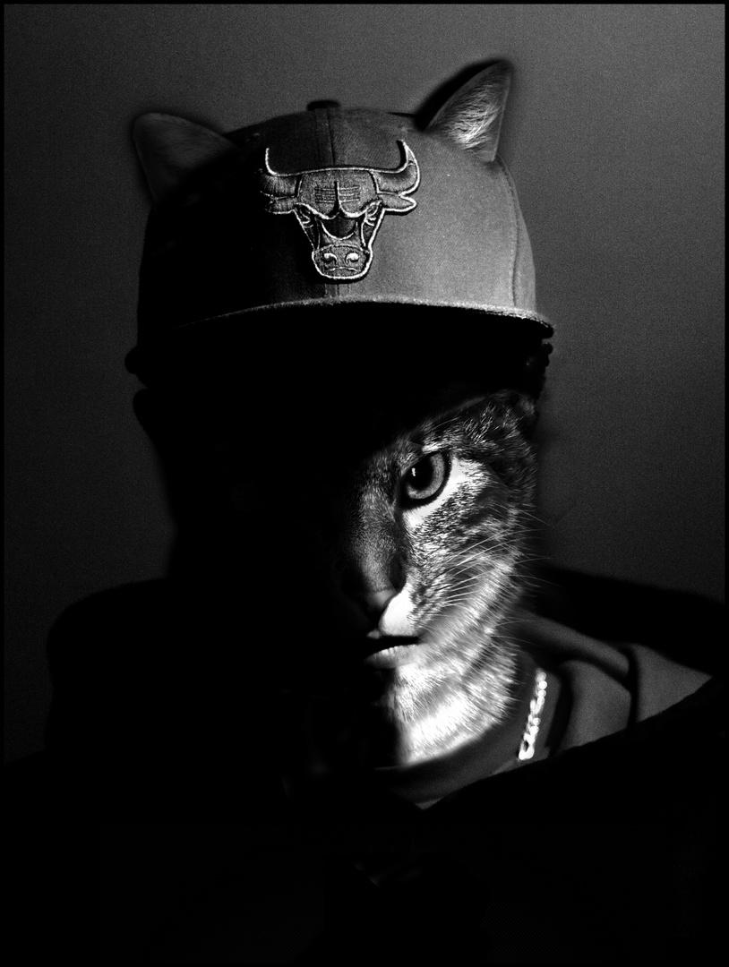 Me as my cat