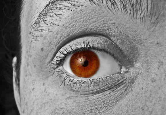 me, myself and my eye