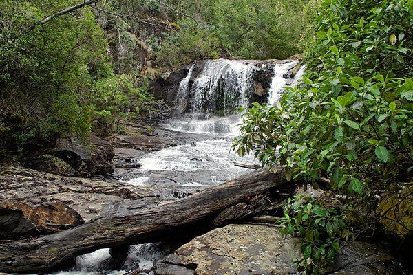 Meander Walk, Tasmania, Australia