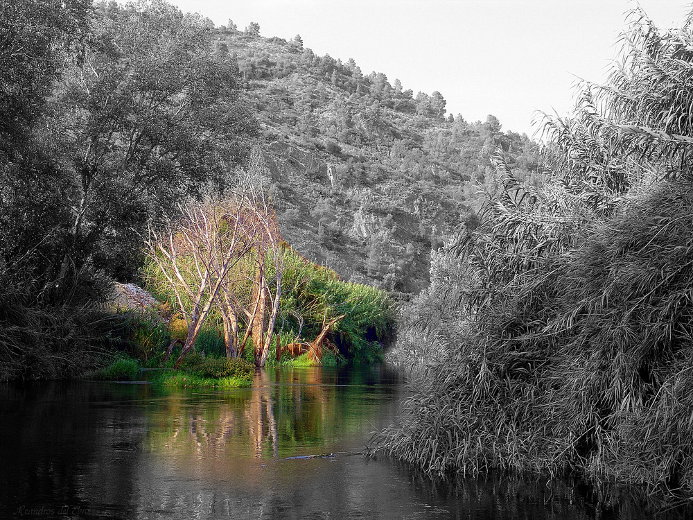 Meandros del Ebro