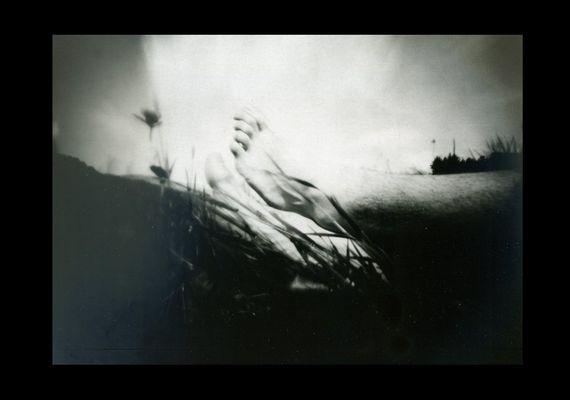 MEDITAZIONE CAMPESTRE ( selfportrait )