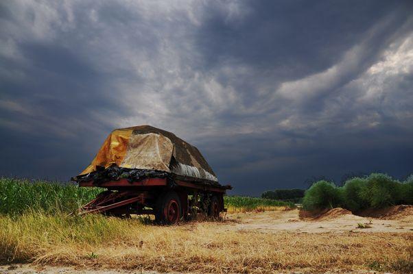 Meerbusch - Landwirtschaft II