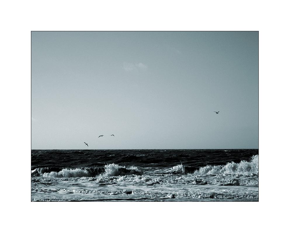 Meeresrauschen ...
